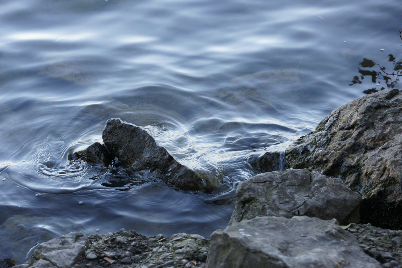 wp-001-Foto Art-am Wasser-02